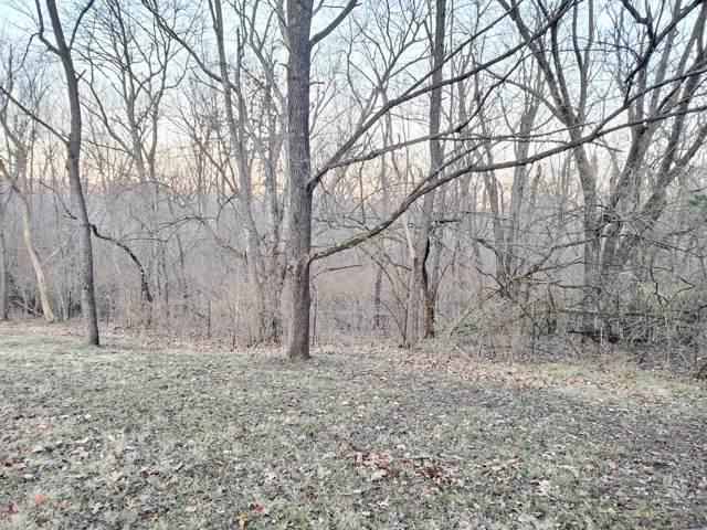 4138 S State Highway J, Rogersville, MO 65742 (MLS #60152939) :: Sue Carter Real Estate Group