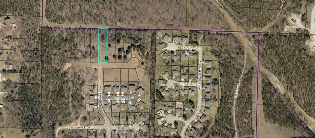 165 Bald Cypress (Lot 51A), Hollister, MO 65672 (MLS #60152941) :: Sue Carter Real Estate Group