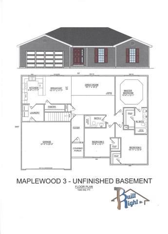 155 Bald Cypress Court, Hollister, MO 65672 (MLS #60152950) :: Team Real Estate - Springfield