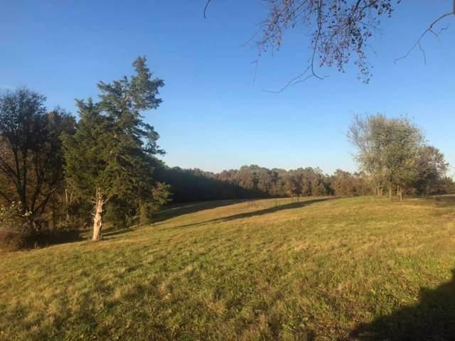 Tbd Stu Circle, Highlandville, MO 65669 (MLS #60152985) :: Sue Carter Real Estate Group
