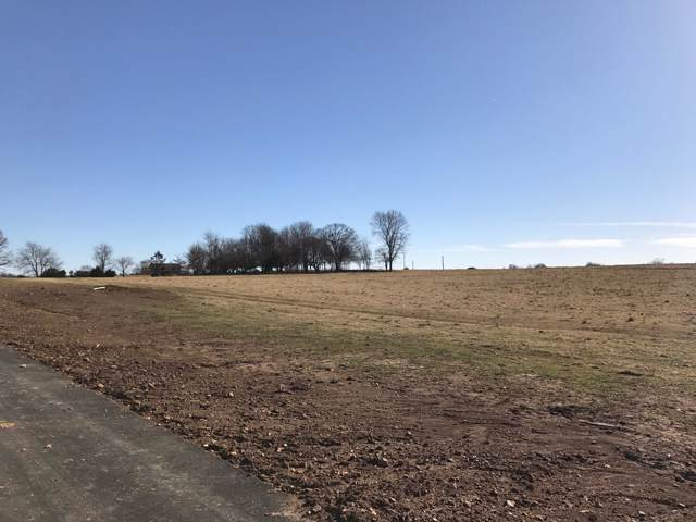 Lot 8 Clearview Court, Ozark, MO 65721 (MLS #60153055) :: Sue Carter Real Estate Group