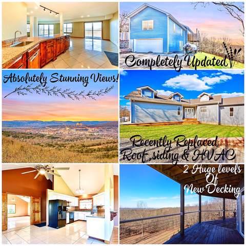 802 Freeman Lane, Hollister, MO 65672 (MLS #60153090) :: Sue Carter Real Estate Group