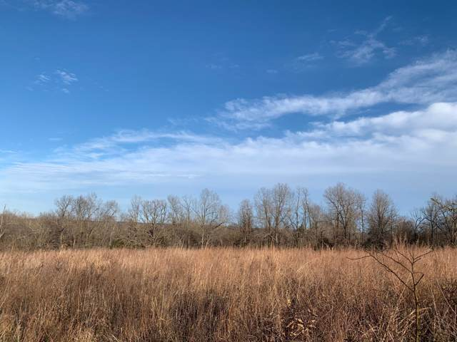 000 Carpenter Road, Thayer, MO 65791 (MLS #60153234) :: Team Real Estate - Springfield