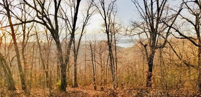 Tbd Devil's Pool Rd, Ridgedale, MO 65739 (MLS #60153239) :: Sue Carter Real Estate Group