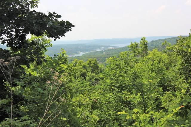 Lot 229 Bethany Lane, Branson West, MO 65737 (MLS #60153287) :: Winans - Lee Team | Keller Williams Tri-Lakes