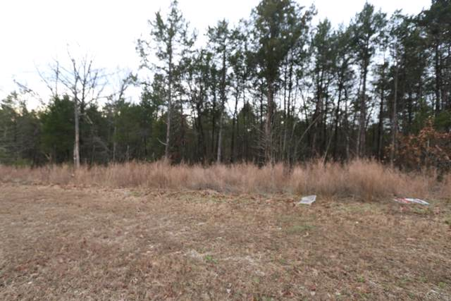 Lot 23 Royal Dornoch Drive, Branson, MO 65616 (MLS #60153339) :: Massengale Group