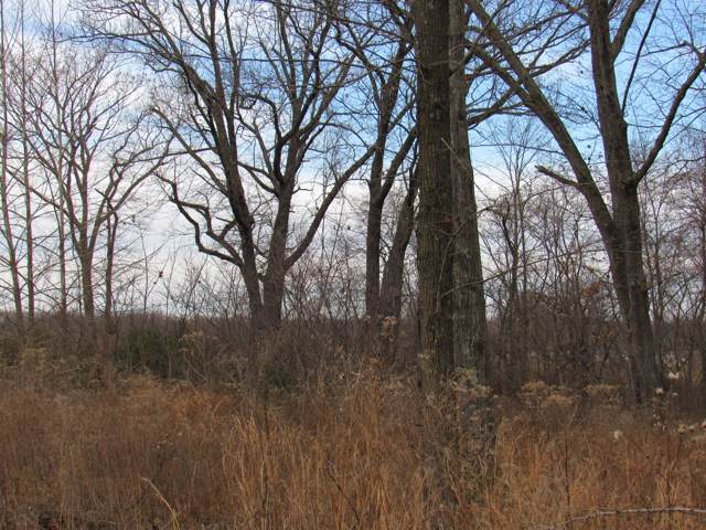 Lot 19 Westbrook, Marshfield, MO 65706 (MLS #60153416) :: Sue Carter Real Estate Group