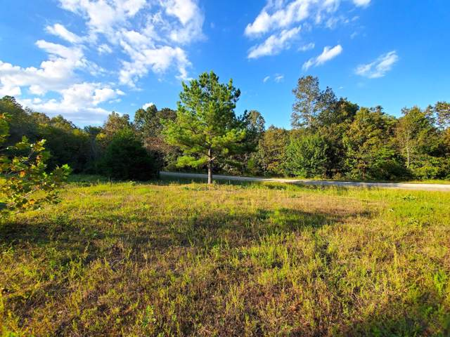 000 Highway 63 & Nettleton Avenue, Thayer, MO 65791 (MLS #60153698) :: United Country Real Estate