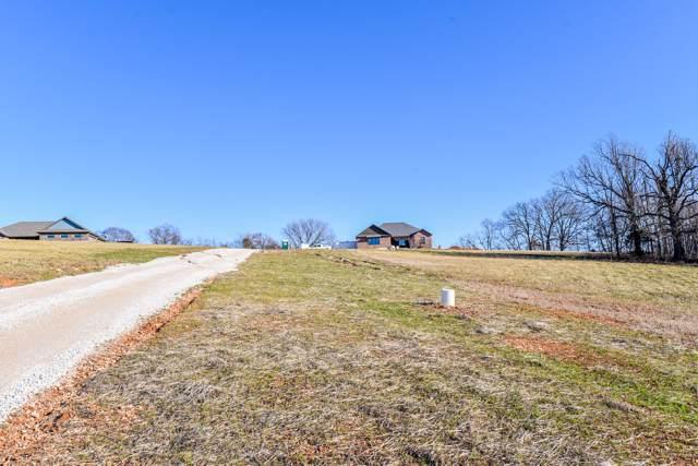 891 Azalea Lane, Clever, MO 65631 (MLS #60154086) :: Team Real Estate - Springfield