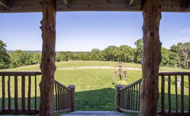 26362 Farm Rd 2125, Cape Fair, MO 65624 (MLS #60154111) :: Sue Carter Real Estate Group