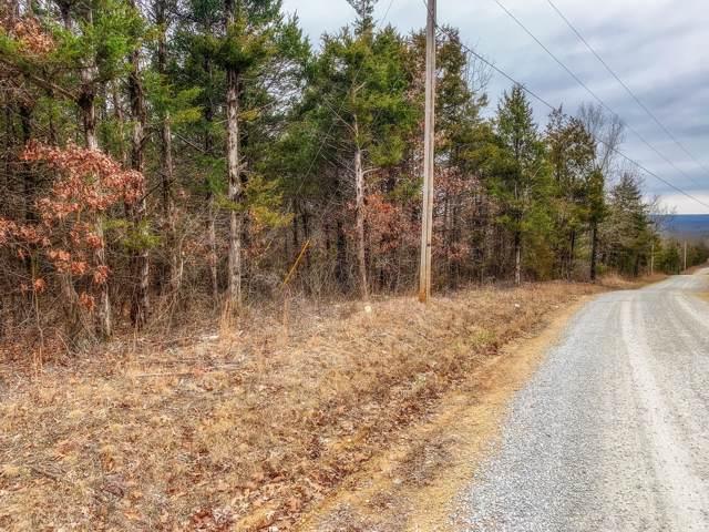 000 County Road 829, Gainesville, MO 65655 (MLS #60154344) :: Weichert, REALTORS - Good Life