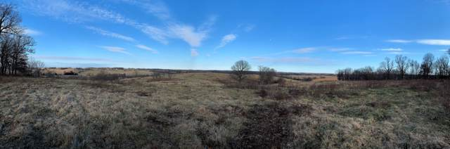 13821 State Highway U, Purdy, MO 65734 (MLS #60154538) :: Sue Carter Real Estate Group