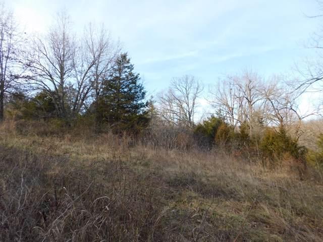 9935 W Farm Road 4, Walnut Grove, MO 65770 (MLS #60154555) :: Sue Carter Real Estate Group