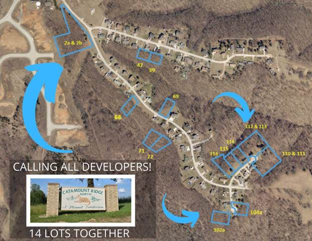 000 Lots Catamount Ridge North, Branson West, MO 65737 (MLS #60154568) :: Sue Carter Real Estate Group