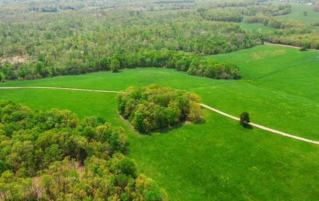 000 Frame Drive, Houston, MO 65483 (MLS #60155064) :: Sue Carter Real Estate Group