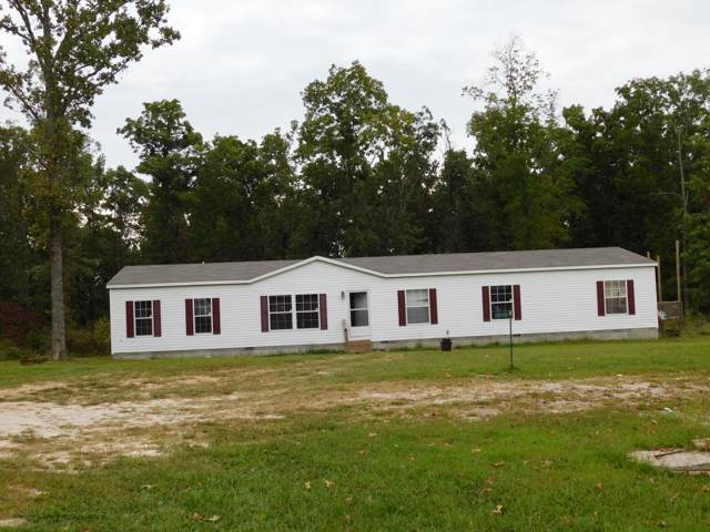 5008 Odin Rd, Mansfield, MO 65704 (MLS #60155143) :: Sue Carter Real Estate Group