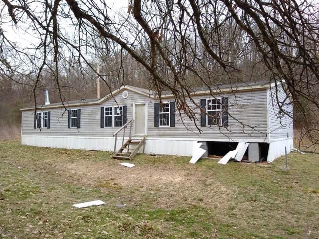 15 Brewer Lane, Noel, MO 64854 (MLS #60155203) :: Sue Carter Real Estate Group