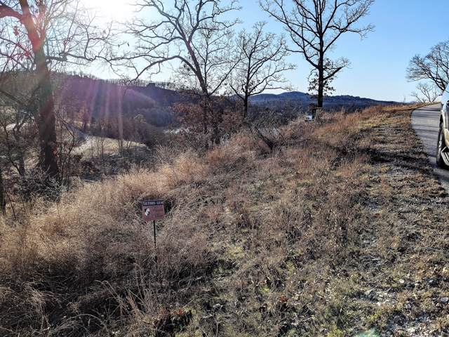Lot 44 Alexandra, Lampe, MO 65681 (MLS #60155213) :: Sue Carter Real Estate Group
