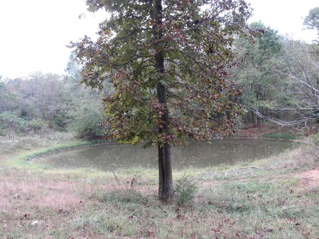 Rt 1 Box 64-1, Macomb, MO 65702 (MLS #60155237) :: Sue Carter Real Estate Group