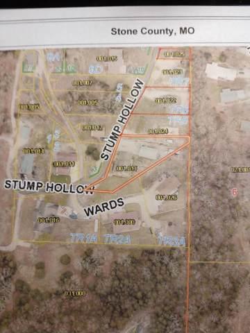 160,180''' Stump Hollow Road, Branson West, MO 65737 (MLS #60155348) :: Massengale Group