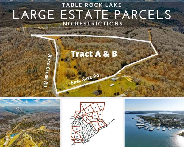 Tract A & B, Branson West, MO 65737 (MLS #60155352) :: Massengale Group