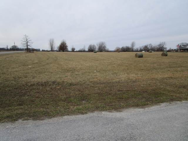 4091 S 106th Road, Bolivar, MO 65613 (MLS #60155355) :: Sue Carter Real Estate Group