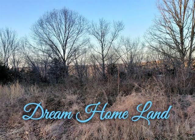 223 Appletree Drive, Ozark, MO 65721 (MLS #60155363) :: Team Real Estate - Springfield