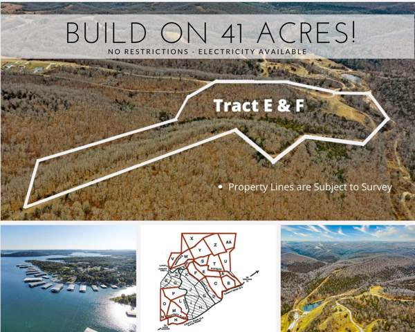 Tract E & F, Branson West, MO 65737 (MLS #60155414) :: Massengale Group