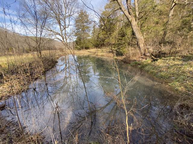 000 State Hwy 76, Cassville, MO 65625 (MLS #60155416) :: Massengale Group