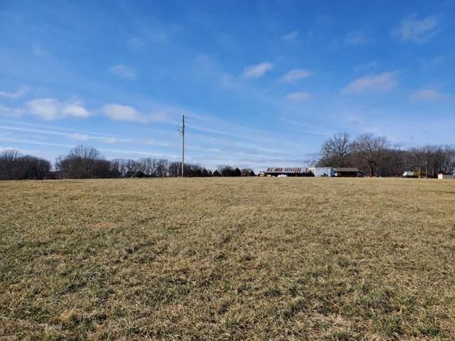 1639 Peck Hollow Road, Rogersville, MO 65742 (MLS #60155483) :: Team Real Estate - Springfield