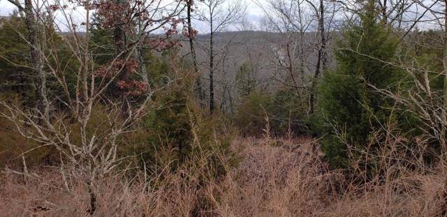 Lot 8 Limestone Drive, Reeds Spring, MO 65737 (MLS #60155487) :: Weichert, REALTORS - Good Life