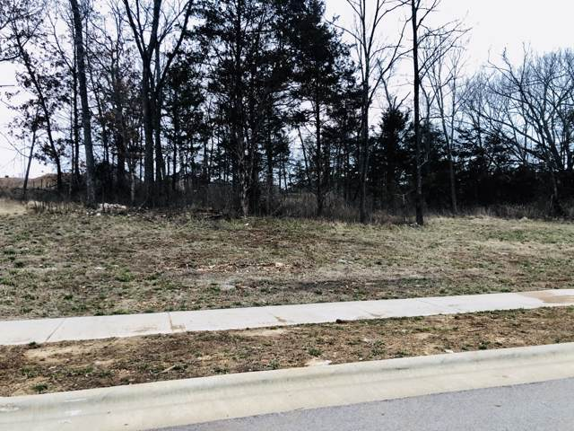 Lot 103 E Cypress Point, Springfield, MO 65802 (MLS #60155526) :: Massengale Group