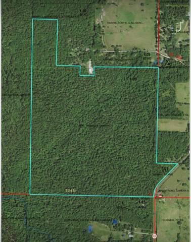 000 W St Hwy Kk Highway, Pottersville, MO 65790 (MLS #60155624) :: Team Real Estate - Springfield