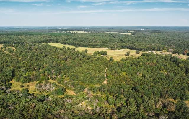 000 Highway Ah, Plato, MO 65552 (MLS #60155680) :: Sue Carter Real Estate Group