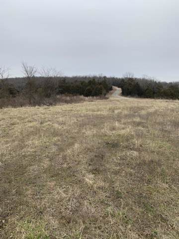 000 County Road 829, Thornfield, MO 65762 (MLS #60155717) :: Team Real Estate - Springfield