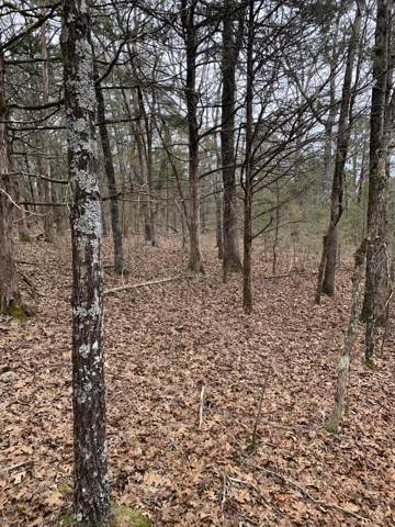 000 County Road 829, Thornfield, MO 65762 (MLS #60155723) :: Team Real Estate - Springfield