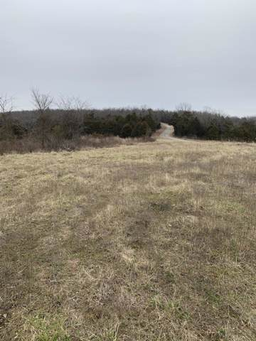 000 County Road 829, Thornfield, MO 65762 (MLS #60155727) :: Team Real Estate - Springfield