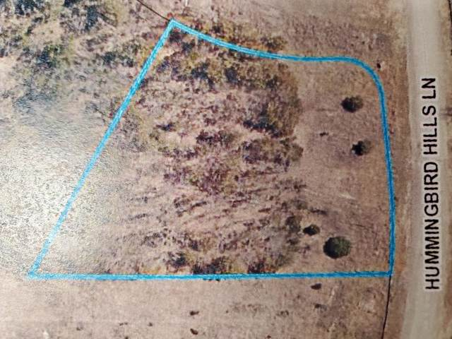 Lot 43 Hummingbird Hills Lane, Branson, MO 65616 (MLS #60155903) :: Weichert, REALTORS - Good Life