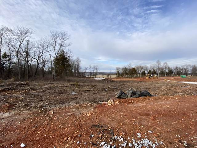 Lot 31 The Estates Of Enniskerry, Nixa, MO 65714 (MLS #60155937) :: Weichert, REALTORS - Good Life