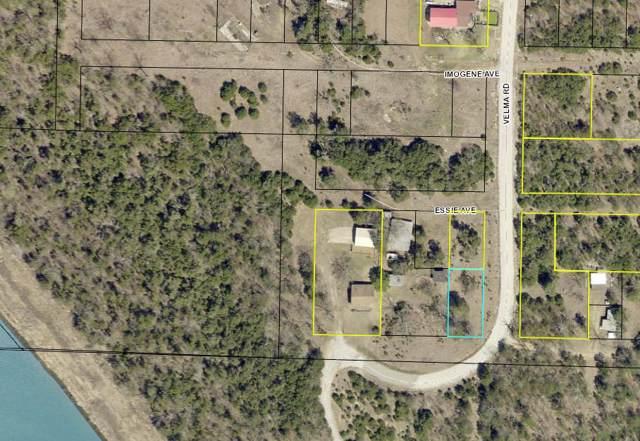 Lot 1 Velma Road, Protem, MO 65733 (MLS #60155970) :: Winans - Lee Team   Keller Williams Tri-Lakes
