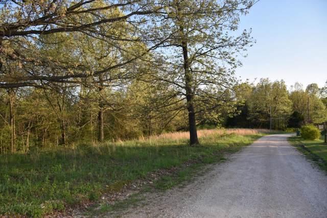 Tbd Briarwood Drive, Seligman, MO 65745 (MLS #60155977) :: Winans - Lee Team   Keller Williams Tri-Lakes
