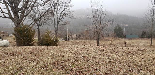 Lot 4 Red Cedar Point, Branson, MO 65616 (MLS #60156072) :: The Real Estate Riders