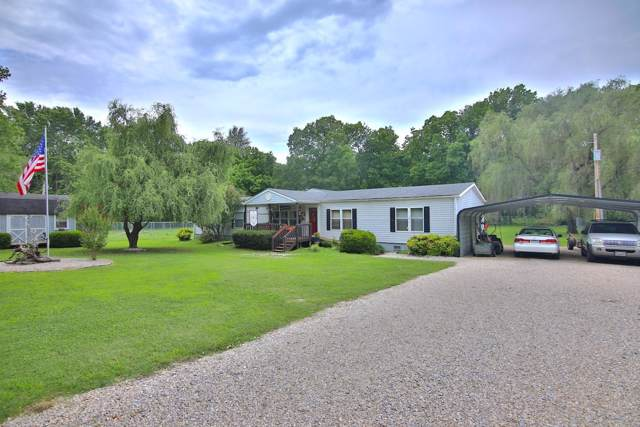 109 Spring Lake Drive, Mammoth Spring, AR 72554 (MLS #60156123) :: The Real Estate Riders