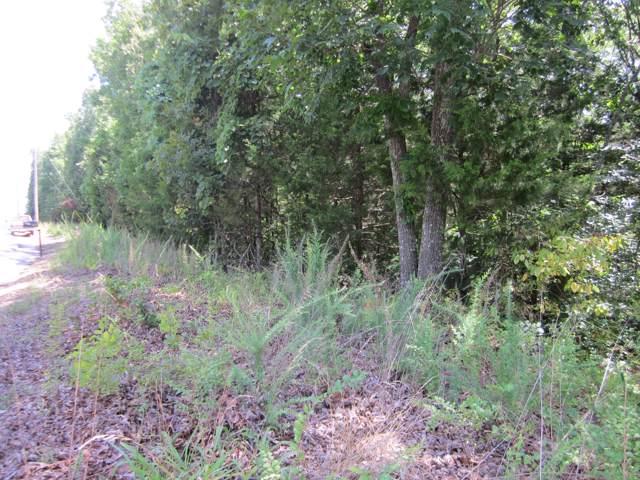 Lots 152a Dogwood Village Lane, Lampe, MO 65681 (MLS #60156207) :: Sue Carter Real Estate Group