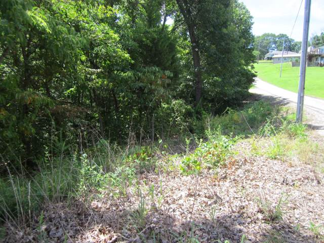 Lots 153a Dogwood Village Lane, Lampe, MO 65681 (MLS #60156208) :: United Country Real Estate