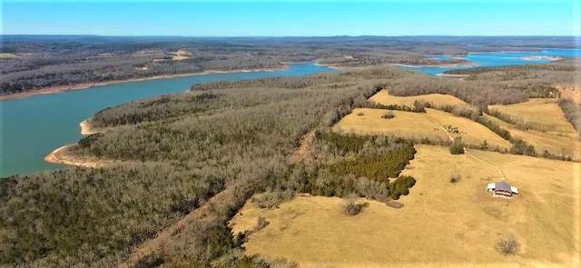 000 West Robin, Lead Hill, MO 72644 (MLS #60156488) :: Sue Carter Real Estate Group