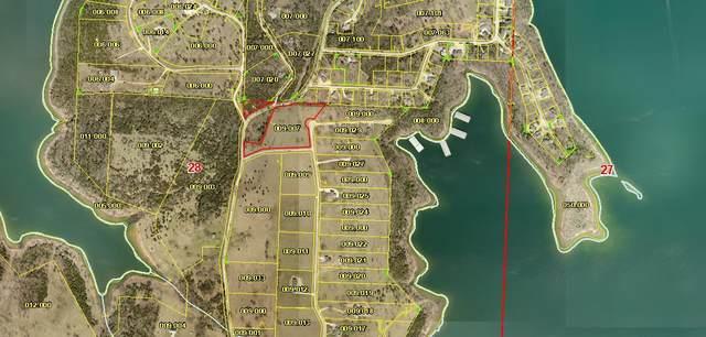 495 Lago Vista Drive Drive, Shell Knob, MO 65747 (MLS #60156601) :: Team Real Estate - Springfield