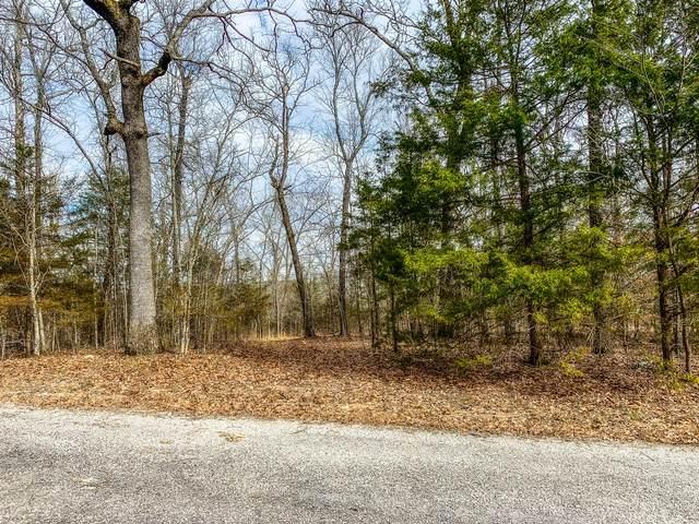 000 Sunrise Drive, Theodosia, MO 65761 (MLS #60156674) :: Team Real Estate - Springfield