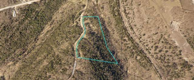1217 Blue Ridge Drive, Hollister, MO 65672 (MLS #60156867) :: Team Real Estate - Springfield