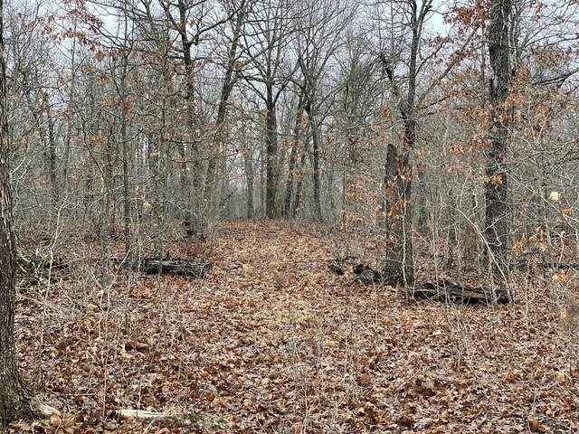 000 Mo-64, Windyville, MO 65783 (MLS #60156939) :: Team Real Estate - Springfield